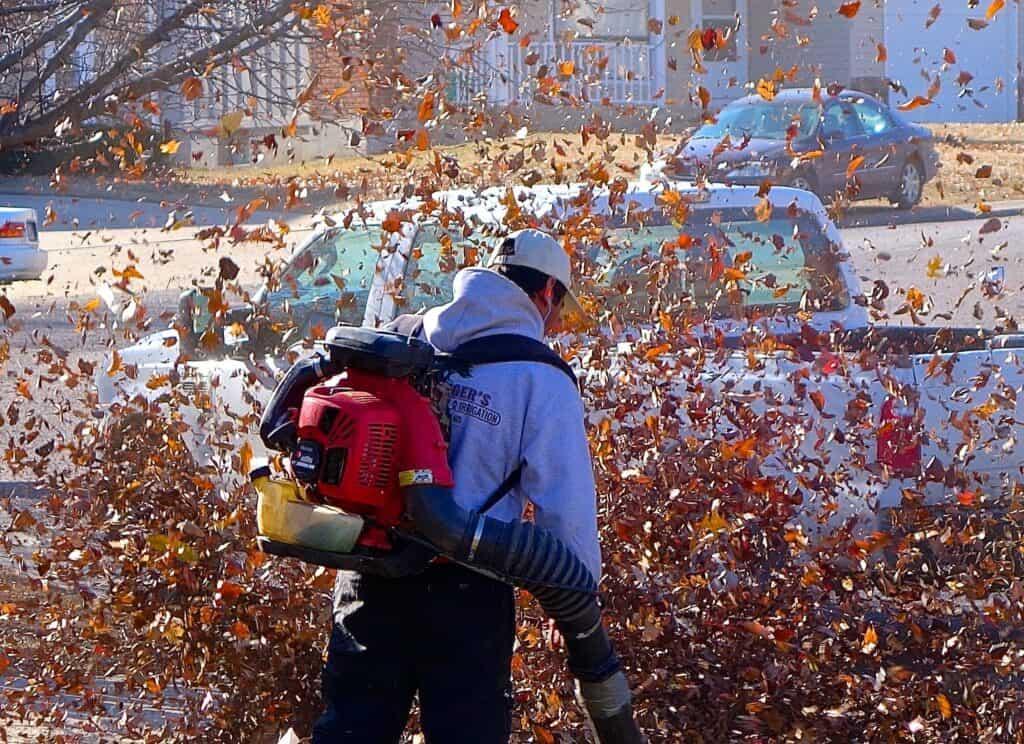 Essential Information When Buying a Leaf Blower