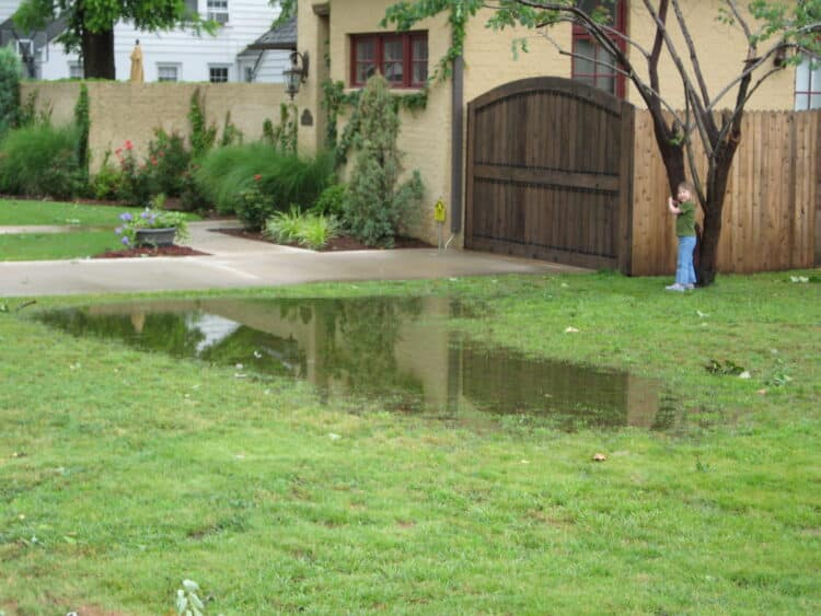 drainage problems and solutions