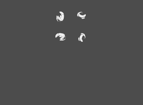Kyle's Garage