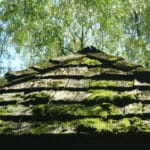 walking on cedar shake roof