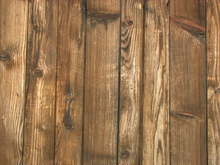 how to identify wood types