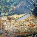 how to cut a log lengthwise with a chainsaw